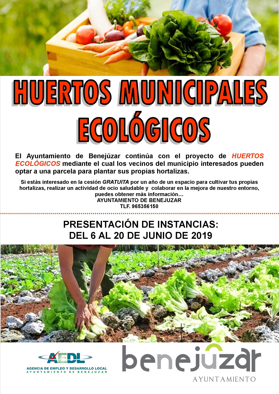 HUERTOS ECOLOGICOS 19