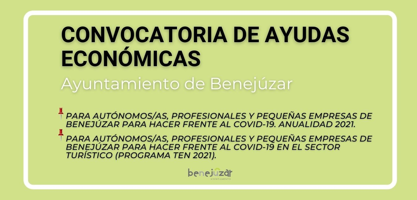CONVOCATORIA DE AYUDAS ECONÓMICAS WEB